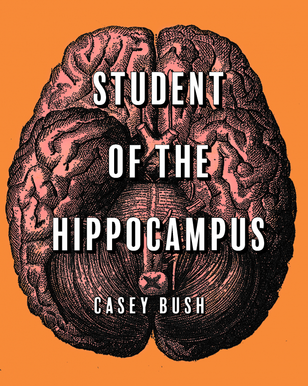 Student of the Hippocampus