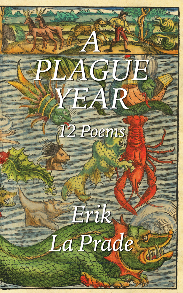 A Plague Year | 12 Poems | Front Cover